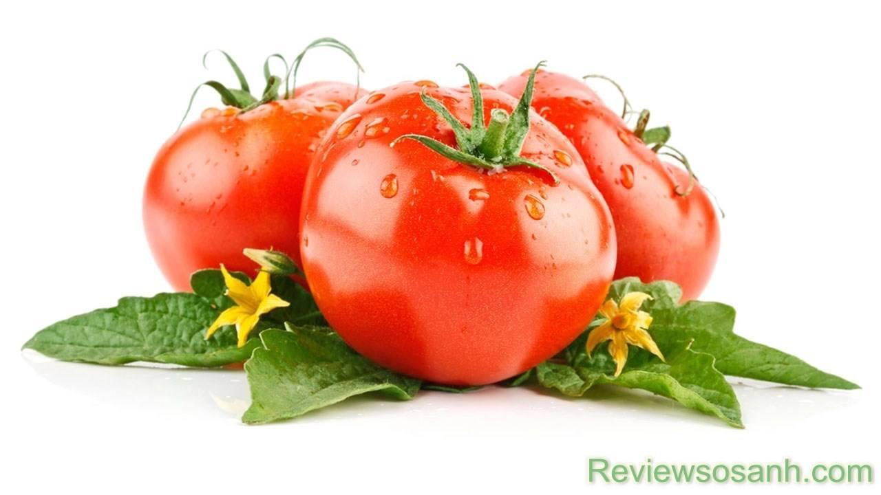 Cà chua giúp ngăn chặn quá trình lão hóa của da
