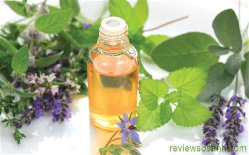 tinh dầu hương nhu giúp tóc nhanh dài
